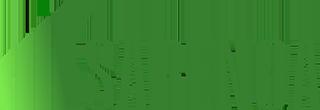 sarenga logo